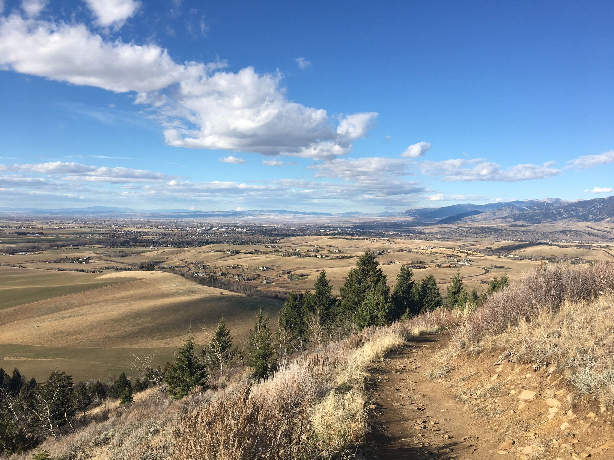 Triple Tree Trail Is One Of A Number Great Hiking Trails In Bozeman Montana
