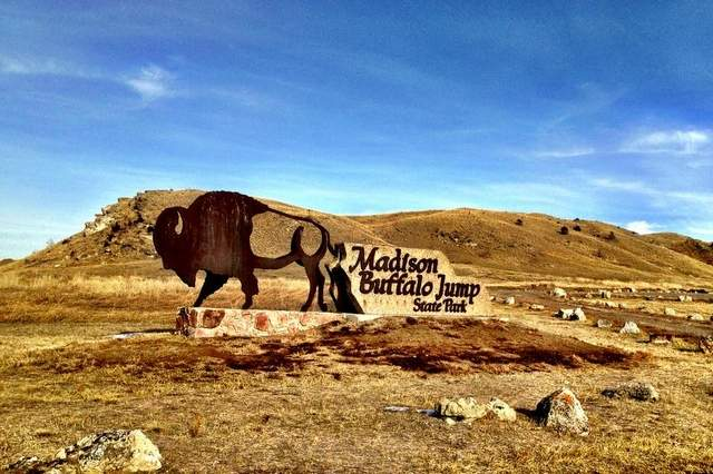 There are many state parks near Bozeman, Montana including Buffalo Jump State Park.