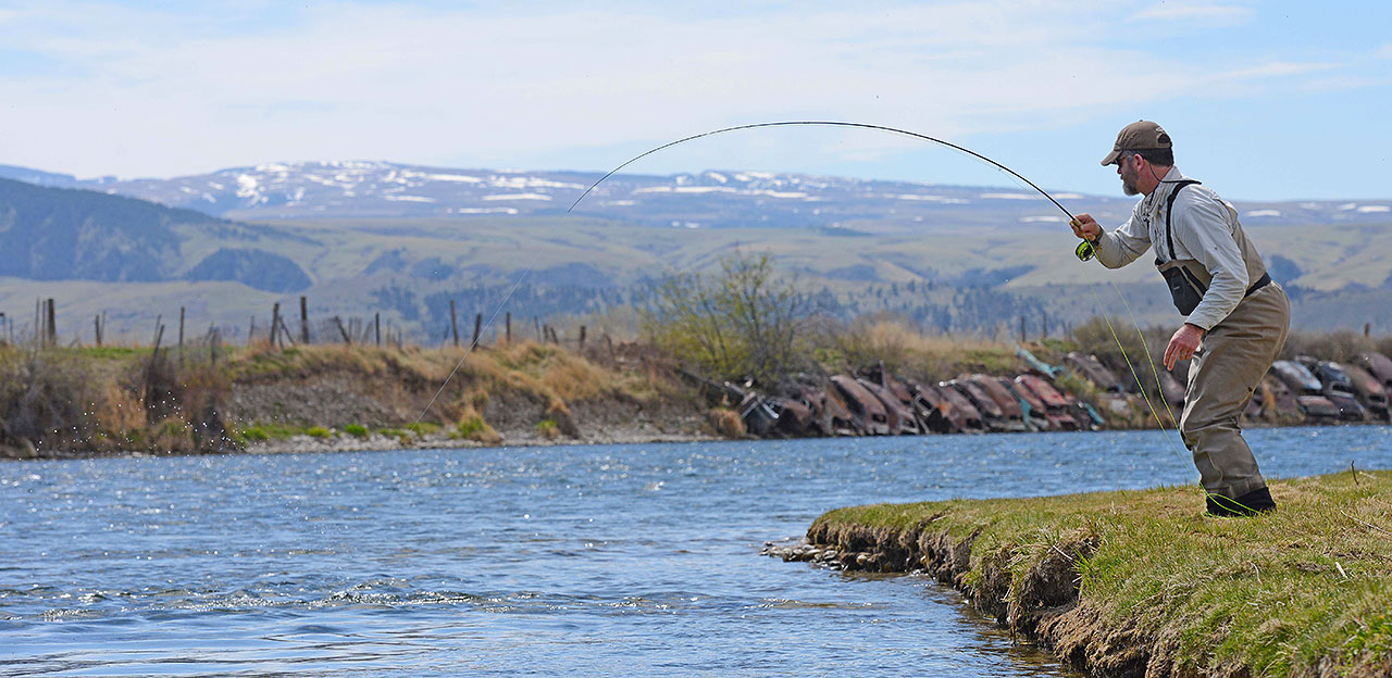 Fall fishing in montana bozeman community trg peak blog for Bighorn river fishing report
