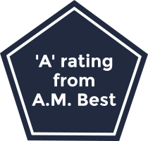 The AM Best rating for the Hanover Insurance Group.