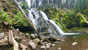 Grotto Falls Montana