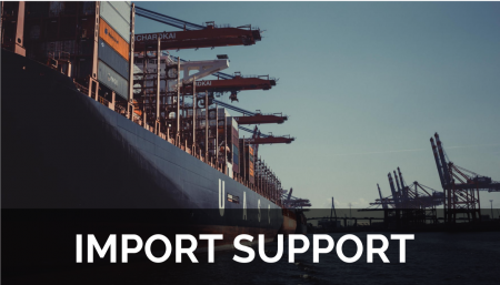 There are many tasks an importer is required to carry out in order to be importing into the country, some of which can be hired out.