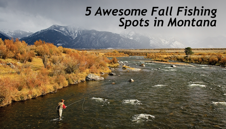 Fall fishing in montana bozeman community trg peak blog for Bozeman mt fly fishing