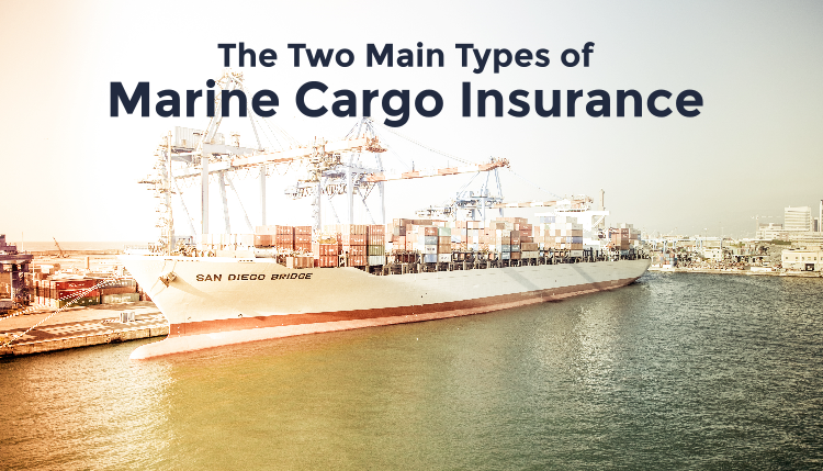 Learn the two main types of cargo insurance and make sure your international trade is protected.