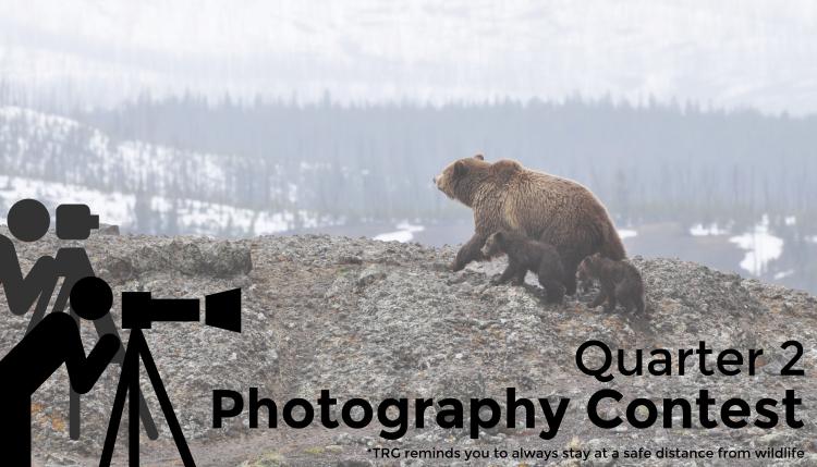 TRG's 2016 2nd Quarter Photography Contest