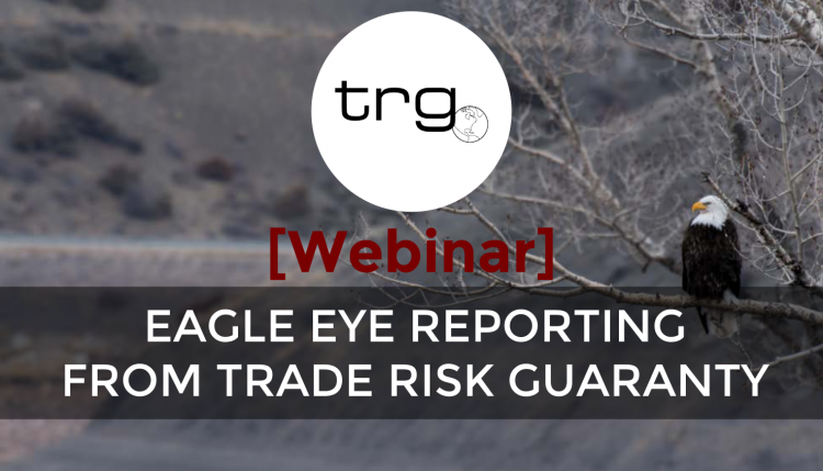 Trade Risk Guaranty hosts a webinar explaining the Eagle Eye Reporting system that helps you monitor your entries.