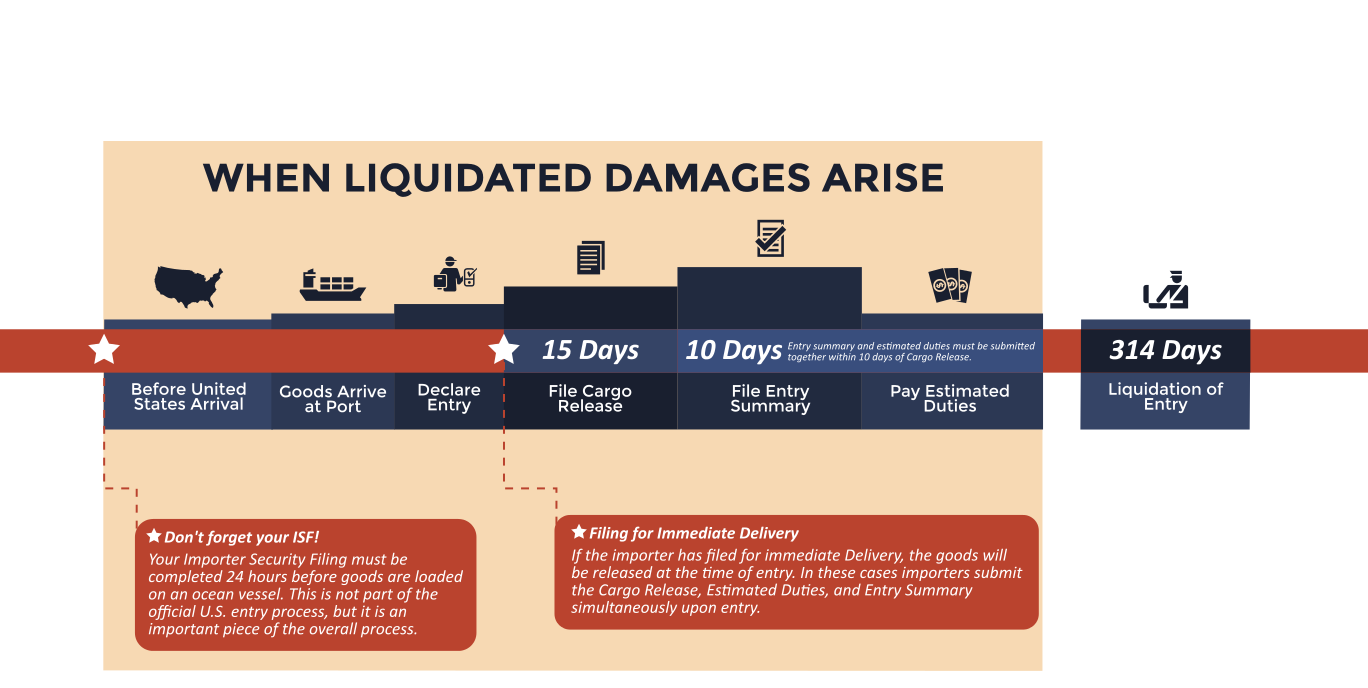 The timeline for the process of entering goods in to the United States showing when liquidated damage claims can arise.