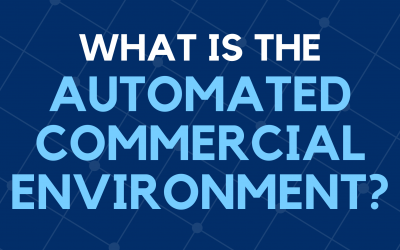 What is The Automated Commercial Environment (ACE)?